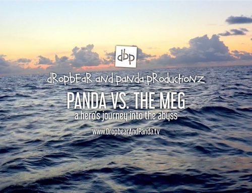 Panda vs. The Meg – A hero's journey